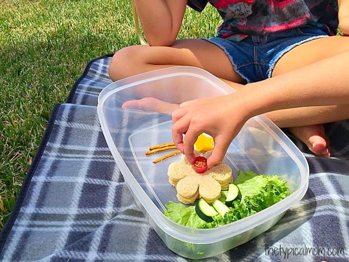 healthy lunchbox ideas for preschoolers