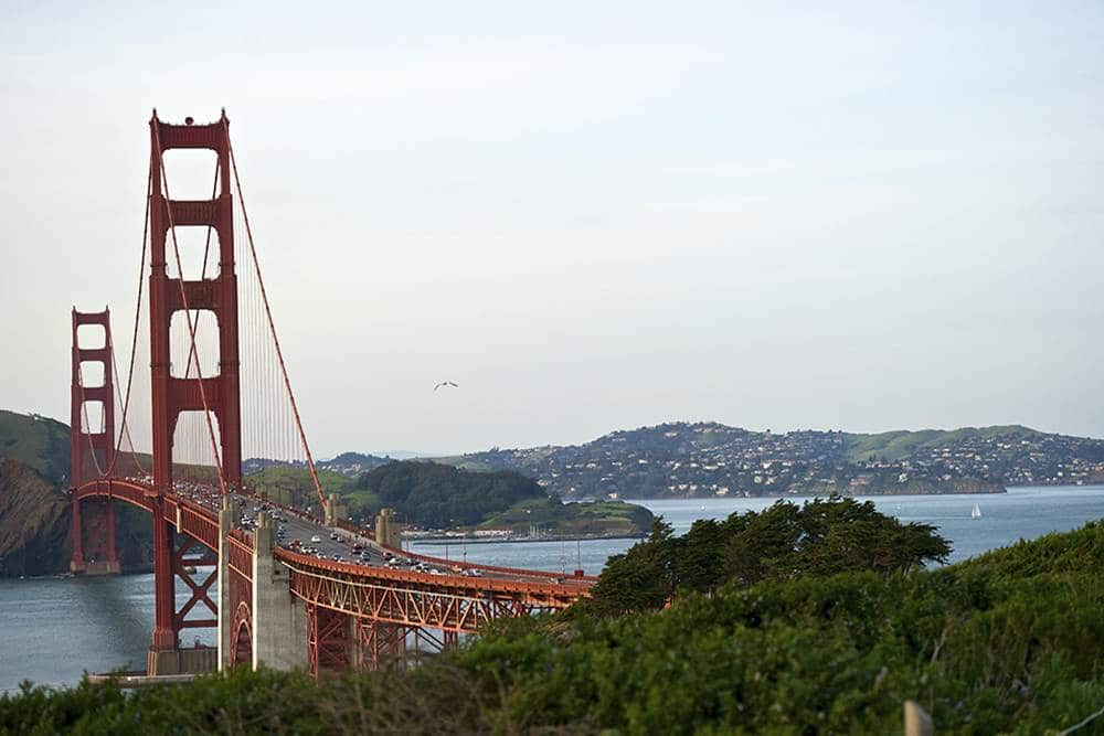 Things to do in SF with kids