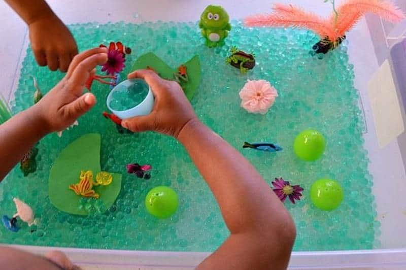 Pond life sensory bin