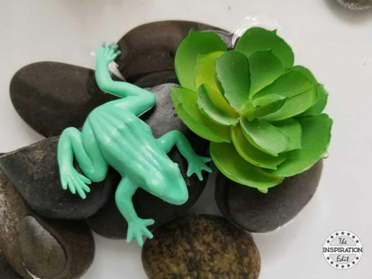 Frog Sensory Bin Preschool Activity